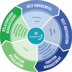 Emotional Intelligence Custom360